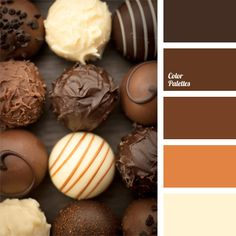 monochrome palette of brown palettes with color ideas for decoration your house, wedding, hair or even nails.
