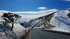 On the way to Mt Hotham