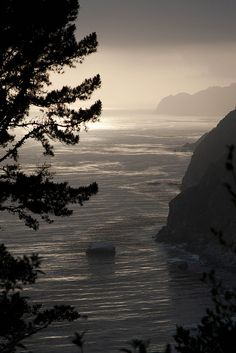 Fog rolling in on the California coast