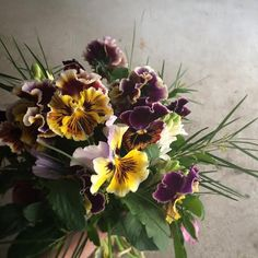 bouquet.pansy.
