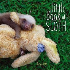 March book releases — We have a feeling A Little Book of Sloth would be the most popular and adorable coffee table book ever. British filmmaker, photographer, and sloth expert Lucy Cooke shares her heartwarming photos of the residents of the Aviarios Sloth Sanctuary in Costa Rica, the world's largest sloth orphanage. I WANT THIS SO BAD!!!! SOMEONE! ANYONE! PLEASE GET THIS FOR ME!!!