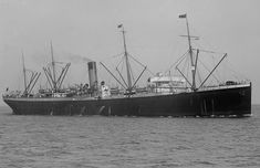 SS Suevic (high def) - White Star Line - Wikipedia Belfast, Liverpool, Costa, Titanic, Sailing Ships, Line, The Past, Ocean, Stars