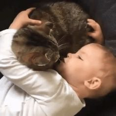Only you can understand me and listen #child #cat #talk