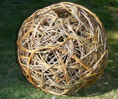 Sussex Willow - Products