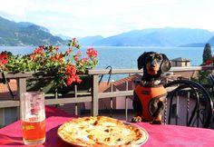 Crusoe at Best Pizzeria Lake Como