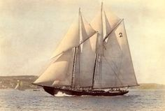 Bluenose was a Canadian fishing and racing schooner from Nova Scotia built in 1921 Old Sailing Ships, Fishing Vessel, Classic Yachts, Naval, Wooden Boats, Model Ships, Tall Ships, Water Crafts, Nova Scotia