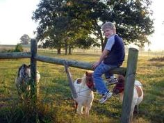 Homeschool Organization: Daily Routine : Robin Sampson's Blog