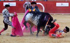 Toureiro morre após ser chifrado no peito em competição na Espanha