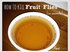 Kill those nasty fruit flies!!  1/2 cup apple cider vinegar  2-3 drops of dish soap Stir in a bowl and sit out. The apple cider attracts them and this dish soap make it too slippery to get out.