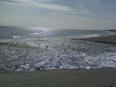 The Atlantic Ocean (Have been to a bay but I want to go to the shoreline)