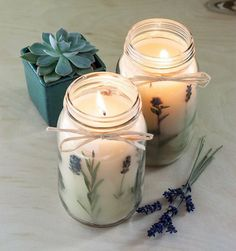 potted succulent, diy candles, two large jars, filled with candle wax, mixed with lavender Diy Candles Scented, Gel Candles, Homemade Candles, Mason Jar Candles, Candle Wax, Lavender Candles, Diy Candle Glass, Diy Candles With Flowers, Ideas Candles