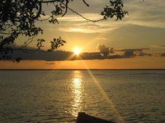 The Amazon Brazil