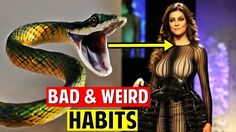 9 Bad and Weird Habits Of Bollywood Actors | You Din't Know - Download This Video   Great Video. Watch Till the End. Don't Forget To Like & Share 10 Bad and Weird Habits Of Bollywood Actors | You Din't Know For any copyright issue or inquiry contact us at rongoshare@yahoo.com or one of our SOCIAL NETWORKS.Once We have received your message and determined you are the proper owner of this content we will have it removed for sure.There is no copyright infringement intended for the song or…