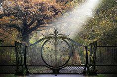 custom-wrought-iron-gates-Aprodite by NVF - Gates, via Flickr