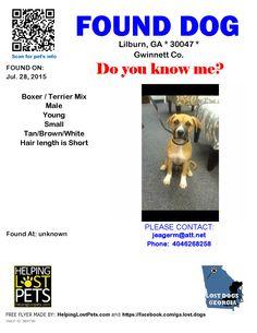 Found Dog - Boxer - Lilburn, GA, United States