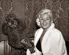 Vintage Doggy: Jayne Mansfield and Her Dogs