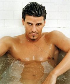 Net Photo: David Boreanaz bath: Image ID: . Pic of David Boreanaz - Latest David Boreanaz Image. David Boreanaz, Look At You, How To Look Better, Just For You, Pretty People, Beautiful People, Pretty Guys, Nice People, People People