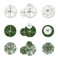 Árboles para su propio paisaje desgns Coupes Architecture, Landscape Architecture Design, Architecture Graphics, Sketch Architecture, Trees Top View, Icon Png, Tree Plan, Garden Design Plans, Garden Drawing