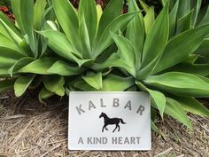 This is a stone I made for a horse that passed away from Hendra Virus.  His owner was understandably distraught.