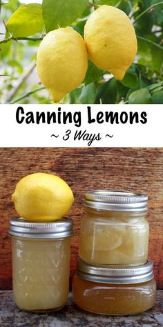 Canning Lemons ~ Three Ways Canning Lemons ~ Three Ways,Ernte Canning Lemons at Home ~ Three Canning Recipes for Lemons including juice, jam and whole fruit ~ Plus ideas for lemonade concentrate, lemon curd. Home Canning Recipes, Canning Tips, Pressure Canning Recipes, Canning Kitchen Ideas, Canning Beans, Canning Soup, Canning Food Preservation, Preserving Food, Lemon Recipes