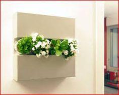 Resultado de imagen para jardin vertical minimalista