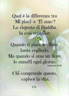 #citazioni #amore