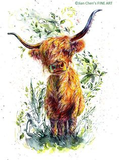 highland cattle mounted original painting by JianChensFINEART Highland Cow Painting, Highland Cow Art, Highland Cattle, Highland Cow Tattoo, Watercolor Illustration, Watercolor Art, Animal Drawings, Art Drawings, Farm Art