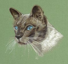 Needle Painting Embroidery Commission - Siamese Cat a Hand Embroidery Design as…