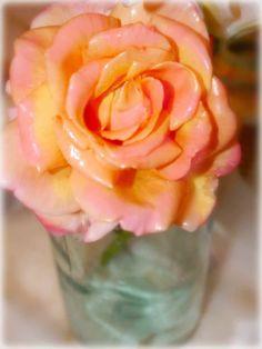 Rozen in was langer bewaren en er langer plezier van hebben. Door rozen een wasbehandeling te geven kun je ze een mooie uitstraling geven en extra lang goed houden.