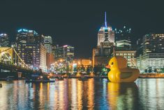Pittsburgh, New York Skyline, River, Cool Stuff, Night, City, Rubber Duck, Middle, Twitter