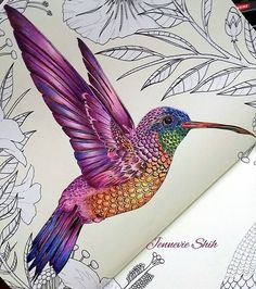 WIP or done? #birdtopia #birdtopiacoloringbook #daisyfletcher #birds #coloring #adultcoloringbook #fangcolourfulworld999 #bayanboyan #coloring #divasdasartes #coloringmasterpiece #desenhocolorir #colorindomeujardimencantado