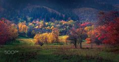 Autumn Morning - Stojcevac - Sarajevo - Bosnia