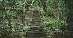 A vadregényes hegyi úttól a szurdok létrájáig: összegyűjtöttük a Balaton és környékének legszebb lépcsőit, amelyek leküzdése után csodálatos panoráma lesz a jutalmunk.