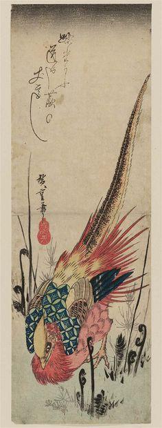 Golden Pheasant and Fern Shoots 蕨に錦鶏 Japanese Edo period about (Tenpô era) Artist Utagawa Hiroshige I (Japanese, Golden Pheasant, Ferns, Japanese Art, Printmaking, Sculptures, Bird Paintings, Edo Period, Drawings, Peacock