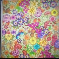 #flores #jardimsecreto #johannabasford #primavera #coloringbook #colorindo #livroantistress