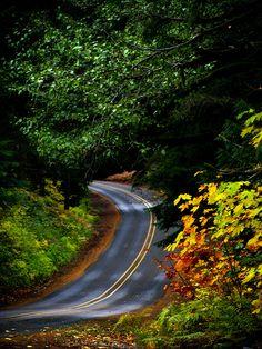 Back roads...and Michigan has thousands of beautiful roads.