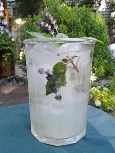 Recipe for limeade with Thai basil and fresh lavender