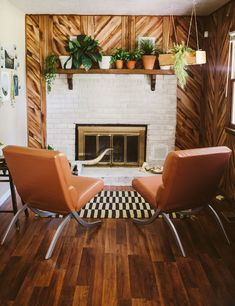 Love how the plants soften this amazing room - those walls, those chairs, that rug, OH MY!