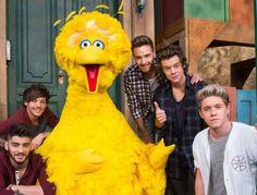 One Direction on Sesame Street!