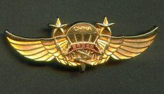 China PLA Airborne Special Forces - Thor Commando 1 st Class Award Pin badge