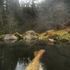 Olympic Hot Springs, Washington | 19 Hot Springs That Are The Earth's Greatest Gift To Mankind