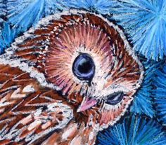 Original Owl Painting in Oil Pastels: Owl with Purple Eyes