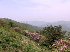 Sobaeksan National Park