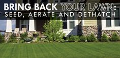 Seeding, Aerating and Dethatching to bring back your yard.