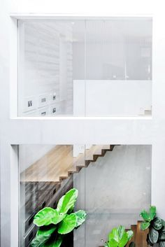 Large glass windows + floating stairs