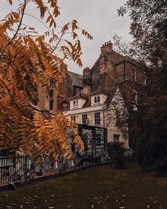 I hope you all don't mind more pictures of Cambridge because we went for a little wander again yesterday & the autumn vibes were so good More Pictures, Autumn Pictures, Autumn Aesthetic, Autumn Cozy, All Nature, Autumn Photography, English Countryside, Autumn Inspiration, Fall Season