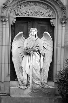 angel 21 bw by Pierre the III, via Flickr