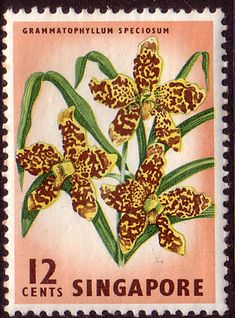 Singapore 1962 SG 70 Orchid Fine Mint SG 70a Scott 76 Commonwealth Stamps here