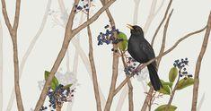 BLACKBIRD ON BLACK ROWAN Blackbird, Rowan, Artworks, Animals, Animales, Animaux, Animal, Animais, Art Pieces