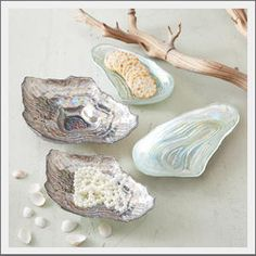 shell plate for jewelry in the bath